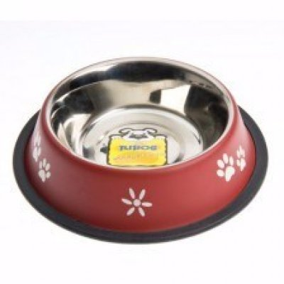 Cat food and drink bowls