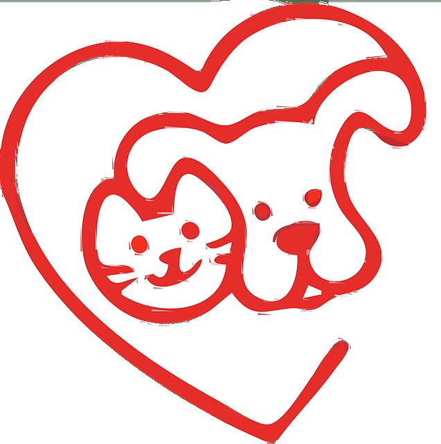 החתול אוכל אוכל של כלבים האם זה תקין?